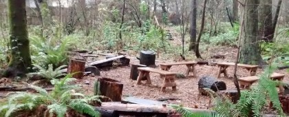circle in the woods (2)