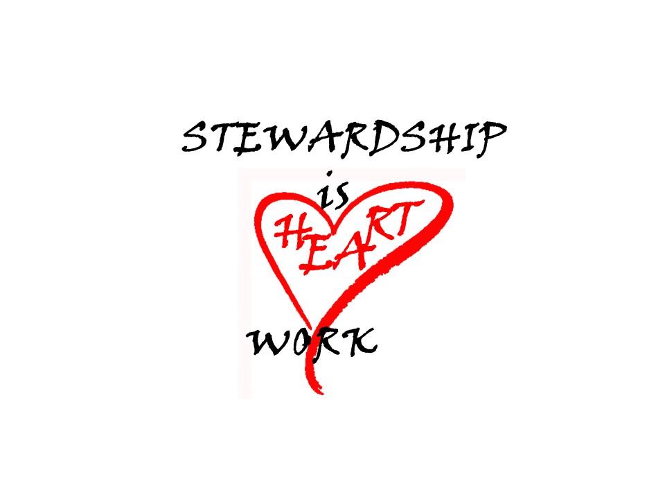 Stewardship 2017 ~ 2018